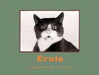 ernie-book